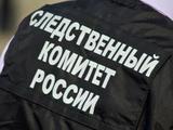 СК: В квартире главы ФБК Рубанова проходит обыск