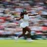Серена Уильямс выиграла 22-й турнир Большого шлема