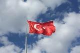 Турция резко повысила пошлины на американские товары