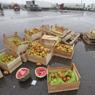 Бирюлевская овощебаза готова открыться — истек срок запрета