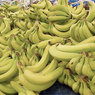 Бананы в России подорожали до максимума пятнадцатилетней давности