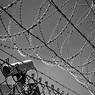 """В колонии в Приморье нашли мертвым осужденного за теракты в """"Интуристе"""" и """"Охотном ряду"""""""