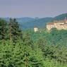 Чехия: на курорте в Климковице займутся нейрореабилитацией