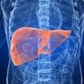 Названы четыре малоизвестных симптома нездоровой печени