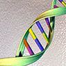 Онкологические заболевания связаны с историей человечества?