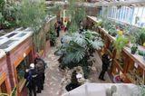Все птицы в Воронежском зоопарке будут уничтожены из-за угрозы птичьего гриппа