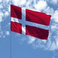 Парламент Дании может рассмотреть законопроект о борьбе с иностранным вмешательством
