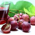 Ученые обнаружили компонент красного вина, замедляющий старение мозга