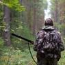 Ульяновские власти пояснили законопроект об охоте на кошек и собак