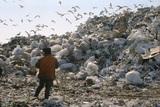 Медведев объявил о ликвидации нескольких мусорных полигонов