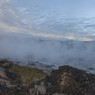 Гринпис: У МЧС Бурятии нет бензина тушить пожар на Байкале