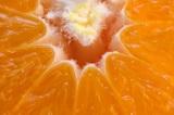 Врачи перечислили пять основных витаминов для укрепления иммунитета