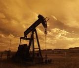 Неопределённость по дате встречи ОПЕК: цены на нефть снижаются, Кремль не комментирует