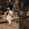 В Калифорнии число пропавших без вести из-за пожара превысило 600