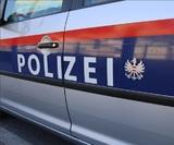 Задержанного в Австрии экс-чиновника Минкультуры РФ отпустили под залог