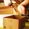 Жительница Кемерова обнаружила у остановки коробки с расчлененными собаками