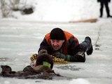 Москвич спасал собаку и сам едва не утонул