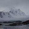 Ученые зафиксировали рекордный минимум площади ледового покрова Арктики