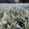 Метеорологи предупредили о заморозках на следующей неделе
