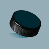 Хоккеист НХЛ разбил шайбой лицо болельщику во время матча