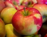 Китайские яблоки и персики пропадут с российского рынка