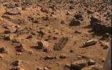 Загадочный пень обнаружен на Марсе