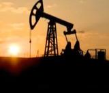 ОПЕК: Переизбыток нефти не оправдывает 60%-е падение цен