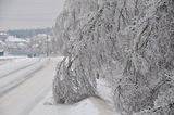 По мнению английских ученых, текущая зима дала старт Малому ледниковому периоду