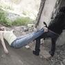 Мигрант зарезал двоих на улице Счастливой