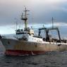 У берегов Чукотки найдены тела 16 моряков с южнокорейского судна