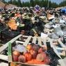 Жители Петербурга намерены провести пикеты против уничтожения еды
