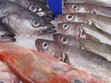 Западное побережье Сахалина усыпало тоннами рыбы