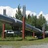 Путин назвал два варианта развития событий с контрактом с Украиной на транзит газа