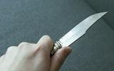 7-летняя девочка под Иркутском попыталась зарезать убийцу своей матери