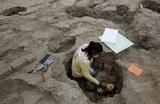 В Перу обнаружена 1000-летняя мумия, завёрнутая в хлопковый «гроб»
