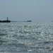 Внучка Роберта Кеннеди утонула с 8-летним сынишкой в заливе рядом с собственным домом
