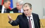 В ГД внесут закон об упрощении получения гражданства РФ