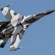 Минобороны России: Истребители ВКС РФ 6 раз за неделю поднимались на перехват