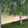 Забор на месте строительства храма в Екатеринбурге снесли