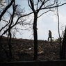 В Донецке пленили сотрудника ООН