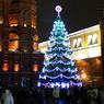 Главную новогоднюю красавицу, возрастом 110 лет, срубили в Московской области