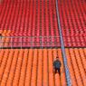 Евро-2016: Журналист легко обошел всю охрану стадиона в Марселе