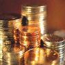 Миллиард рублей субсидии правительства поделили 17 НКО