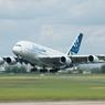 В Екатеринбурге экстренно сел Airbus из-за дебошира на борту