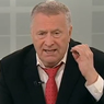 Жириновский требует отставки главы МИД Нидерландов