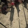 Семейная ссора в Назрани переросла в массовое побоище