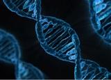 В Китае ученого приговорили к трём годам тюрьмы за изменение генома эмбрионов