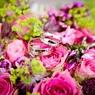 Краснодарский совет судей разобрался, кто оплатил свадьбу судейской дочери и сколько