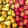 Россельхознадзор запретил поставки белорусских яблок и груш