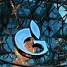 Антимонопольная служба признала «Газпром» виновным